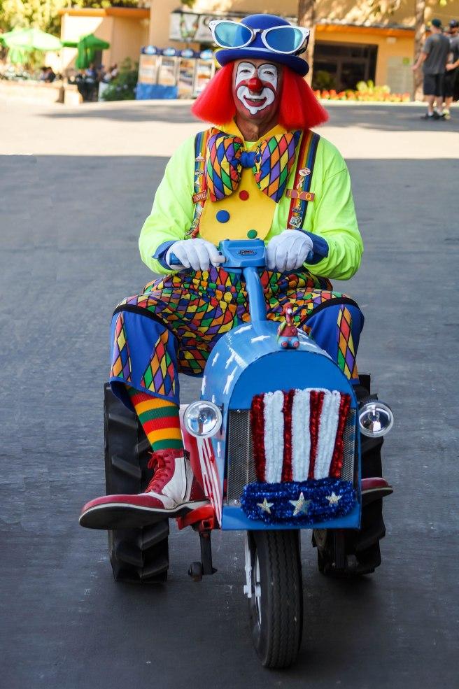 Having Fun at the Alameda County Fair